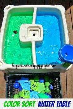 Forme ed acqua colorata - Color Sort Water Bin or Table Play
