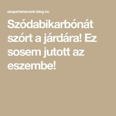 Szódabikarbónát szórt a járdára! Household, Math Equations, Blog, Gardening, Anna, Decor, Ideas, Decoration, Decorating