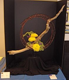 Montana Judges Council, a group of Nationally Accredited Flower Show Judges, is featured on the MFGC website this month. Contemporary Flower Arrangements, Creative Flower Arrangements, Beautiful Flower Arrangements, Beautiful Flowers, Ikebana Arrangements, Ikebana Flower Arrangement, Flower Show, Flower Art, Gerbera