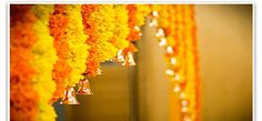 Marigold's are always considered auspicious for wedding and Haldi ceremony decors