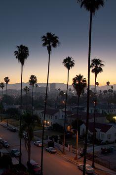 City of Angels #los_Angeles #la #city