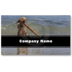 A Dog Day Afternoon Business Card Templates