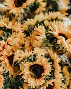 Find over of the best iphone wallpaper images for every season, summer iPhone background, spring iPhone wallpapers. Find 1000 of inspiration, flower iphone. Cute Wallpaper Backgrounds, Flower Backgrounds, Nature Wallpaper, Iphone Wallpapers, Aesthetic Backgrounds, Aesthetic Iphone Wallpaper, Aesthetic Wallpapers, Wallpaper Collage, Foto Top