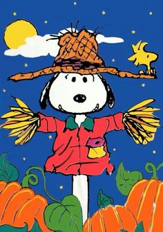 pumpkin patch snoopy scarecrow peanuts gang snoopy and woodstock - Charlie Brown Halloween Cartoon