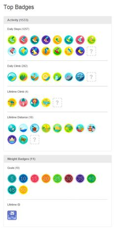 fitbit badges - Google Search