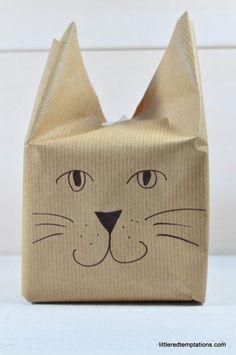 Katzen-Verpackungs-DIY