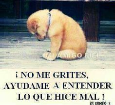 #frases #animales #perros
