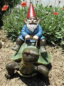 Gnome are not a hurried species so they are able to use tortoises as transportation. Tortoises are astoundingly good at listening and we all know gnomes are very talkative.