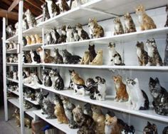 Winstanley Cats - The Pottery - Norfolk UK