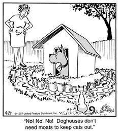 Animal Pics, Animal Quotes, Funny Animal Pictures, Funny Animals, Dog Cartoons, Watch Cartoons, Cartoon Dog, Funny Dog Jokes, Funny Shit