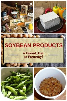 Soybean products are everywhere. As of today, you can buy soy-containing foods, beverages and supplements. But, are soybean products good or bad for your health? This article will give you more information. #healthfriendlysoyfoods