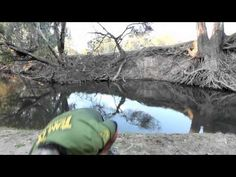 Choosing which surface lure for Murray cod fishing. - YouTube