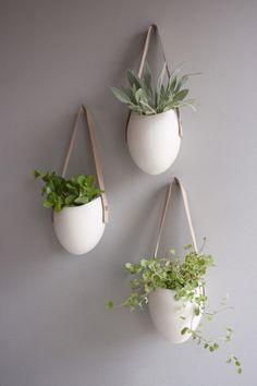 light + ladder hanging planters