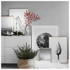 """3,110 Likes, 24 Comments - DESENIO (@desenio) on Instagram: """"🌟 25% discount on photo art 🌟Make your walls pop, and shop trendy prints with photography art and…"""""""