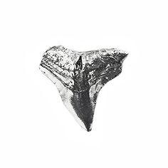 Shark Tooth Lapel Pin Quality Handcrafts Guaranteed https://www.amazon.com/dp/B072P13C25/ref=cm_sw_r_pi_dp_x_aMMIzbRQDPEPV