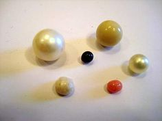 USA freshwater, quahog, Persian Gulf, Conch, Scallop & Blue Mussel natural pearls