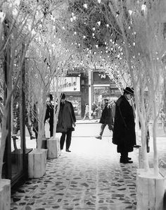 This striking winter setting in a shop doorway is catching the eyes of hundreds of shoppers and delighting children in Northumberland Street, Newcastle in 1963