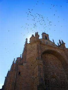 Catedral Nueva | Salamanca, España