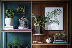 Os detalhes da decoração fazem toda a diferença! Objetos como quadros e vasos compostos em alturas diferentes  chamam atenção e geram equilíbrio. 🌿🏠 #lilianazenaro #decoracao #reforma #interiores #designdeinteriores #decoradora #aparador #estante