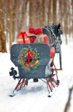 ❤ Equestrian Horse-drawn sleigh