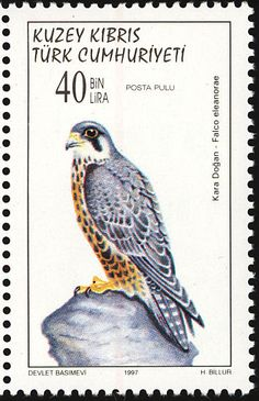 Eleonora's Falcon stamps - mainly images - gallery format
