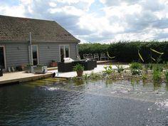 Casa y deseno, http://casaydiseno.com/jardin-y-terraza/piscinas-naturales-aguas-puras.html