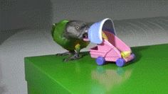just a parrot pushing its baby parrot doll in a tiny stroller