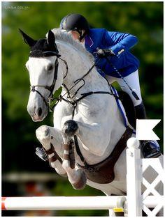 equestrian-paradise:    White Jumper by ~KonikPolski