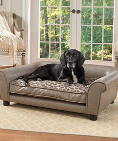 Another great find on #zulily! Pewter Rockwell Sofa Bed Bed #zulilyfinds