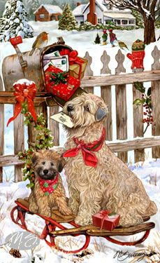Wheaten Terrier - Christmas Delivery