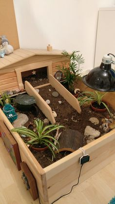 My tortoise enclosure with a few christmas decorations