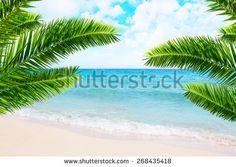 Tropical beach and palm tree.