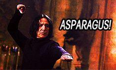 Harry Potter bad lip reading gifs - Imgur