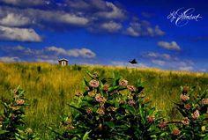 Beaver, West Virginia by LJ Lambert Photography