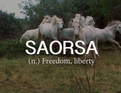 Saorsa — (n.) freedom, liberty.
