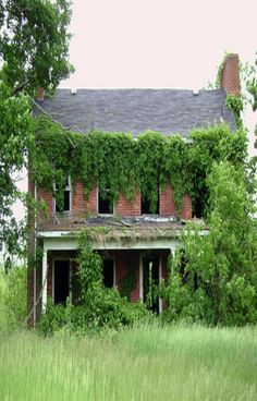 Old Farm House Almost Covered With Vines