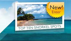 Top Ten snorkel spots in Maui = bucket list!