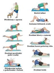 Excercises for lower back pain! It's sad that it shows all old people and I'm 18 with low back pain. Lower Back Pain Exercises, Scoliosis Exercises, Lower Back Pain Relief, Low Back Pain, Stretches, Stretching Exercises, Floor Exercises, Posture Fix, Hip Problems