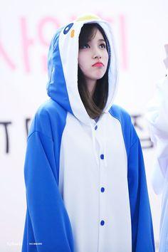 Myoui Mina Twice penguin Nayeon, Kpop Girl Groups, Korean Girl Groups, Kpop Girls, Oppa Gangnam Style, Sana Momo, Jihyo Twice, Sana Minatozaki, Chaeyoung Twice