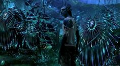 Leona Lewis - I See You (Official Video) Avatar soundtrack HD Avatar Films, Avatar Movie, Vulcan Star Trek, Avatar Theme, Avatar Video, Alien Plants, Avatar Images, Leona Lewis, Little Shop Of Horrors