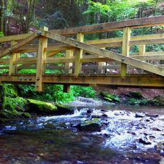 Great bridge!