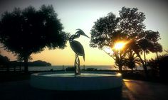 Fountain at Sunset  Ferron Park, Eustis, Florida