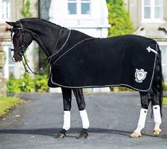 59 Best Horse Rugs Images