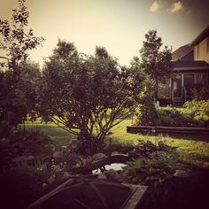 Summer view.