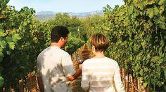 A Taste of Tuscany & Umbria With Go Ahead Tours - Go Ahead Tours