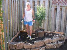 Low Maintenance Gardening (Part 2): Rock Garden