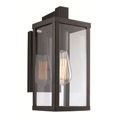 TransGlobe Lighting 1 Light Outdoor Wall Lantern