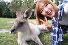 캉가루  #currumbinwildlifesanctuary  #australia #goldcoast #trip #travel  #호주 #골드코스트 #골코 #여행 #동물원 #셀피 #셀카 #selfie #셀스타그램 #selina  #셀리나 by selinalee51 http://ift.tt/1X9mXhV