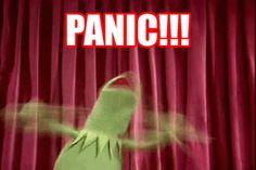 OK, PANIC!!!!!   Kermit the Frog   Know Your Meme