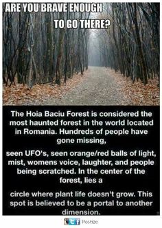 Haunted Forest - Hoia Baciu Forest is located near Cluj-Napoca, Romania and is locally referred to as the Bermuda Triangle of Romania. Real Haunted Houses, Haunted Forest, Most Haunted, Haunted Places, Creepy Facts, Wtf Fun Facts, Creepy Stuff, Freaky Things, Mysterious Things